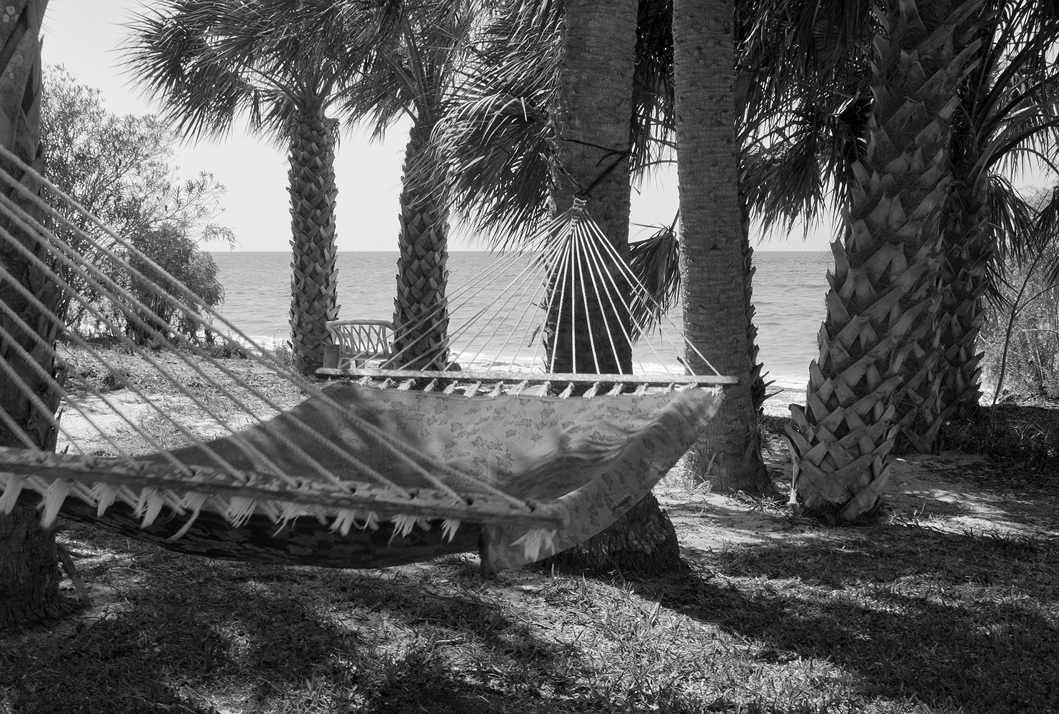 hammock black and white 1000